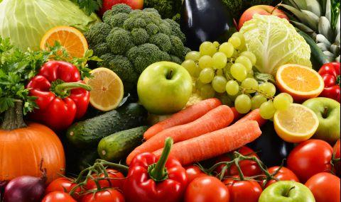 7 храни, които нормализират веднага храносмилането  - 1