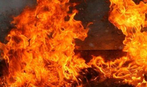 Шефове на сръбския Партизан преживяха огнен ад (ВИДЕО) - 1