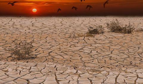 Глобална заплаха! 200 милиона емигрират заради климатичните промени - 1