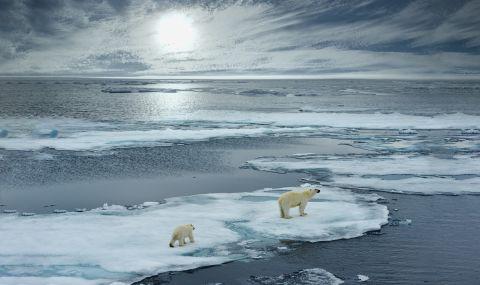 Изстреляха първия спътник за заснемане на Арктика