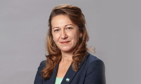 Стела Николова, ДБ за ФАКТИ: ИТН очевидно смятат, че политическите правила не важат за тях - 1
