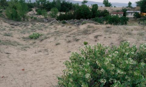 В имота на военните в Несебър няма дюни