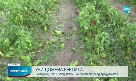 Отпускат 15 милиона лева на пострадалите от градушката в Пловдивско земеделци - 1