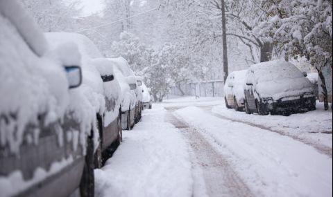 Еколог разкри какви опасности крие зимата без сняг