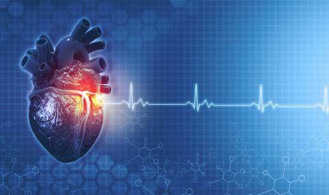 Каква е нормалната сърдечна честота за човек според възрастта му