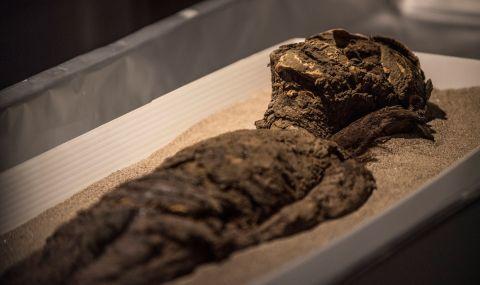 Най-старите мумии в света влизат в световното наследство на ЮНЕСКО (СНИМКИ) - 1