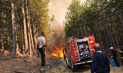 Обявиха пожароопасен сезон във всички горски области в страната