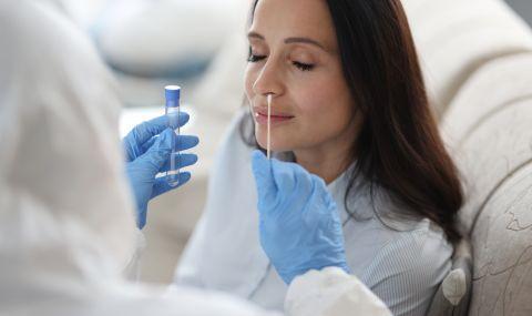 Съседите издават фалшиви PCR-тестове, в схемата участват и хотели