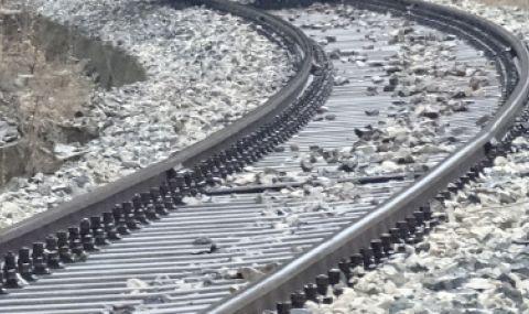 Влак удари стадо крави край Сливен, уби над 20