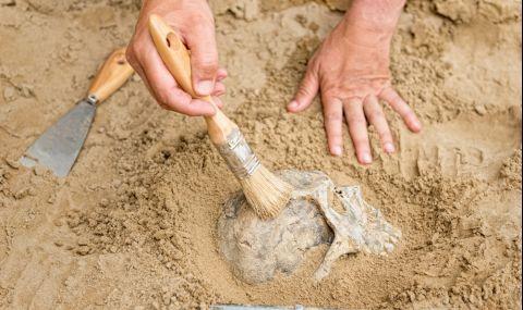 Откриха човешки череп на 32 000 години - 1