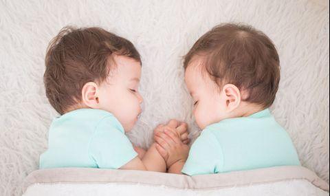 Сурогатна майка роди близнаци, но...