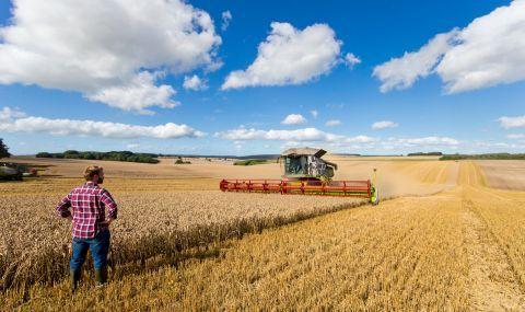 Изплащат по-рано субсидиите на фермерите