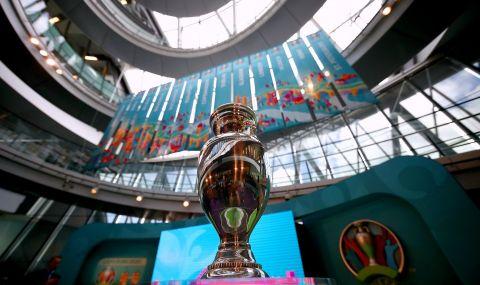 UEFA EURO 2020: Около милион летящи мравки могат да нападнат стадион