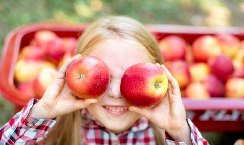5 ползи от ябълките