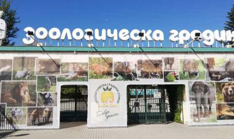 Зоопаркът в София отваря утре
