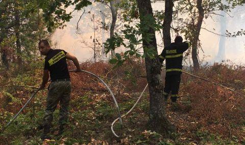 Локализираха голям пожар в Хисарско