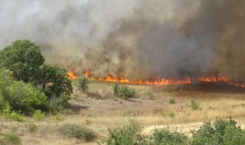 Огънят край Сандански погълна група гасачи - 1