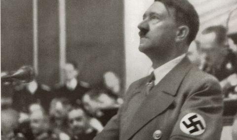 Жена видя лика на Хитлер  в ухото на котка  (СНИМКА)