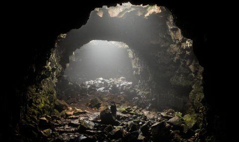 Търсят произхода на коронавируса в пещери