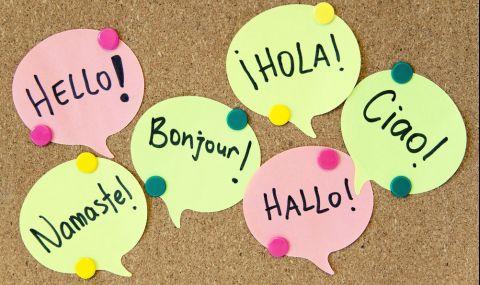Близо 80% от българите знаят чужд език на основно ниво