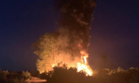 Над 50 000 дка изгоряха за седмица