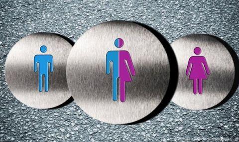 Флорида: Забрана за транссексуални момичета в часа по спорт