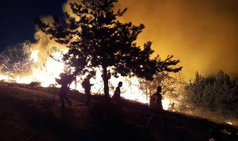 Българските огнеборци се сражават с огъня в Северна Македония на първа линия  - 1