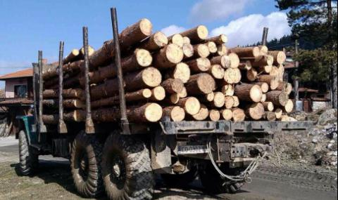Камион с дървесина се преобърна в Смолянско, загина мъж