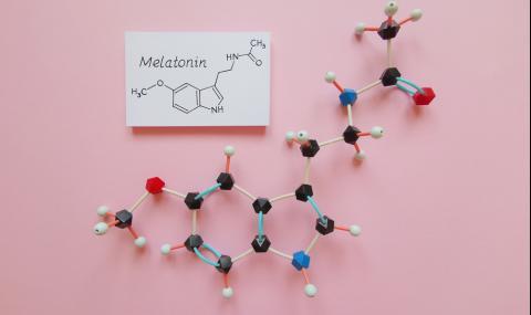 Храни богати на мелатонин - хормонът на младостта