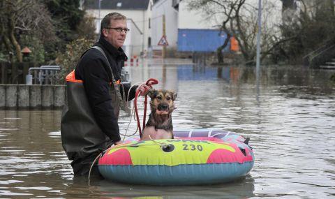 Потопът в Германия: как са спасявани коне, кучета и котки - 1