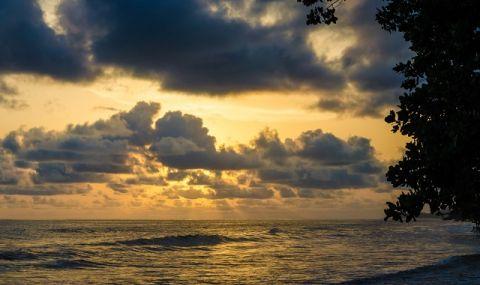 Пред бреговете на Калифорния: десетки хиляди варели с отрова