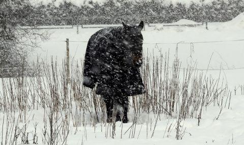 Рекорден студ за април на Балканите
