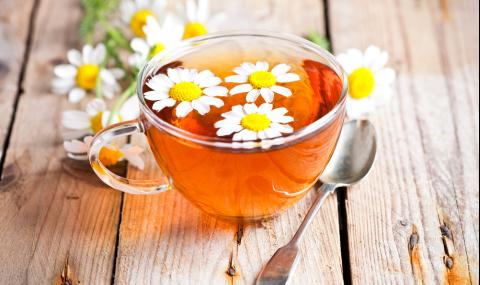 Чаят от лайка бори опасна болест