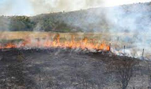 Пожар горя край Велинград - 1