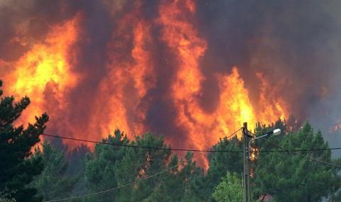 Пожар! Португалия остава в плен на огъня (СНИМКИ)