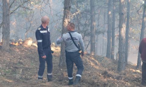 Голям горски пожар се разрази в Харманлийско (ВИДЕО)