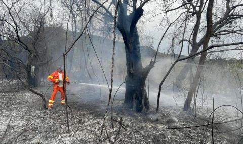 Стотици пожари бушуват в Италия - 1
