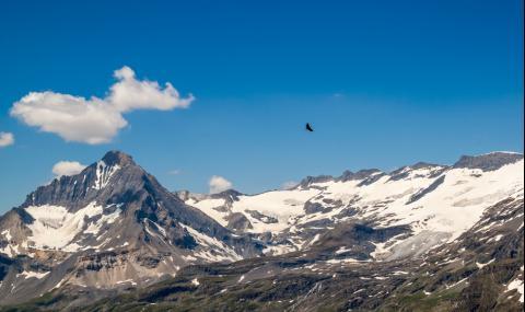 Орел засне с камера нещо ужасяващо в Алпите (ВИДЕО)