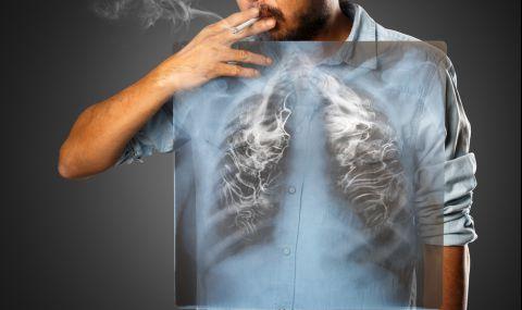 Пушите? Това ще прочисти белите ви дробове - 1