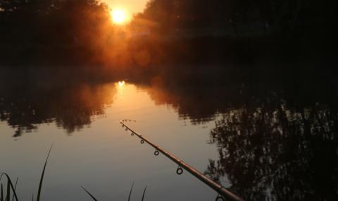 1500 лева глоба за рибар – уловил, но не хвърлил обратно две пъстърви