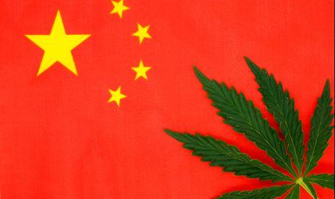 Канабисът е отглеждан oще преди 12 хиляди години в Китай