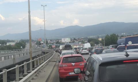 С 4,8% намалели колите в България