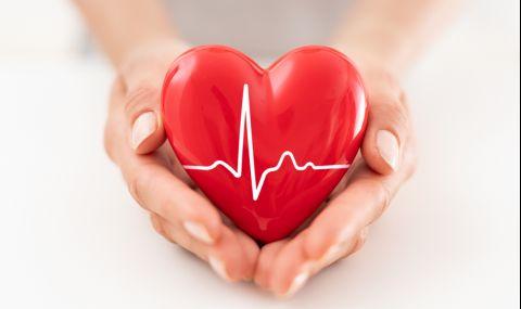 Развенчаха известен мит за здравето на сърцето