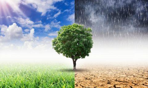 COVID-19 пандемията не е забавила напредването на климатичните промени - 1