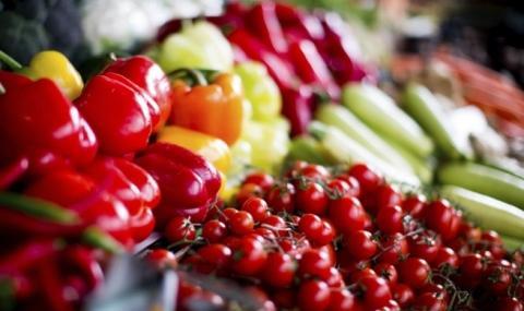 Започна приемът на заявления за инвестиции в растениевъдството