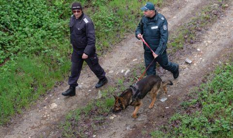 Арестуваха четирима каналджии край Свиленград, докато прекарват 24 афганистанци