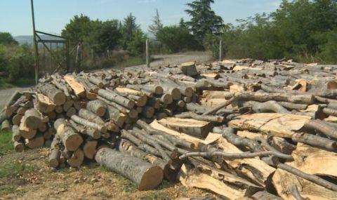 Колко ще струва отоплението на дърва тази зима? - 1