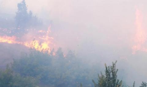 Българи и сърби гасят пожара над Чипровци