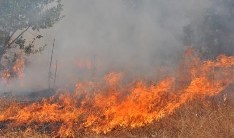 Продължава битката с огъня за Сакар