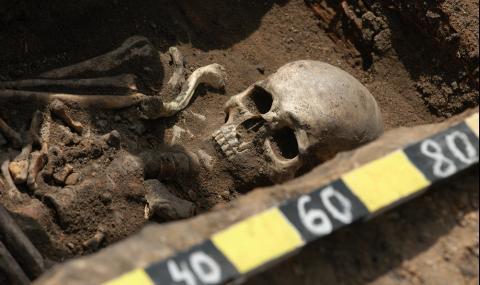 Откриха скелет на 8500 г. в двора на жилищен блок
